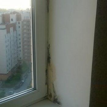 Дешевизна,  плохой критерий при выборе окна